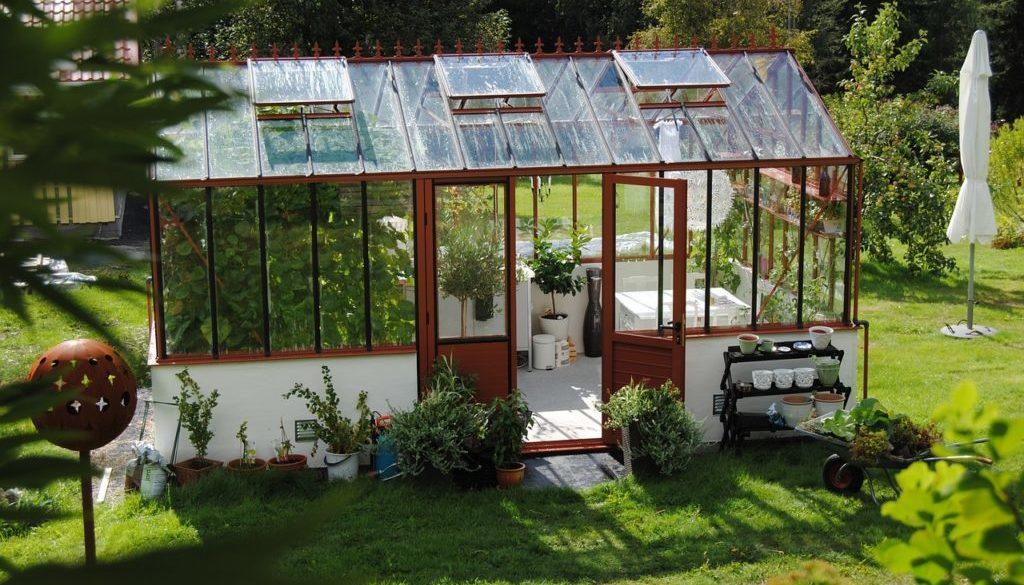Gewächshaus – so kann ich nachhaltig gärtnern